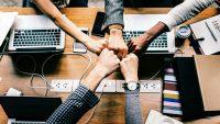 What Do Business Incubators Do?